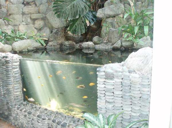 outdoor-fish-tank-pond-woohome-19