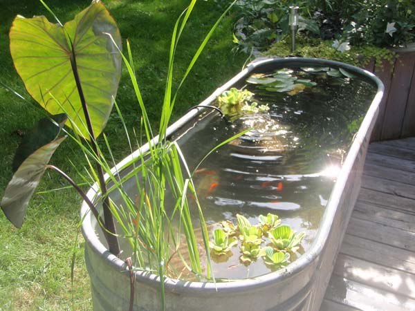 22 small garden or backyard aquarium ideas will blow your for Patio koi pond