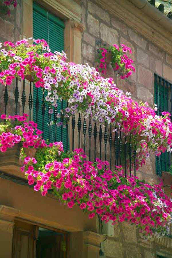 Spectacular-Balcony-Garden-Woohome-1