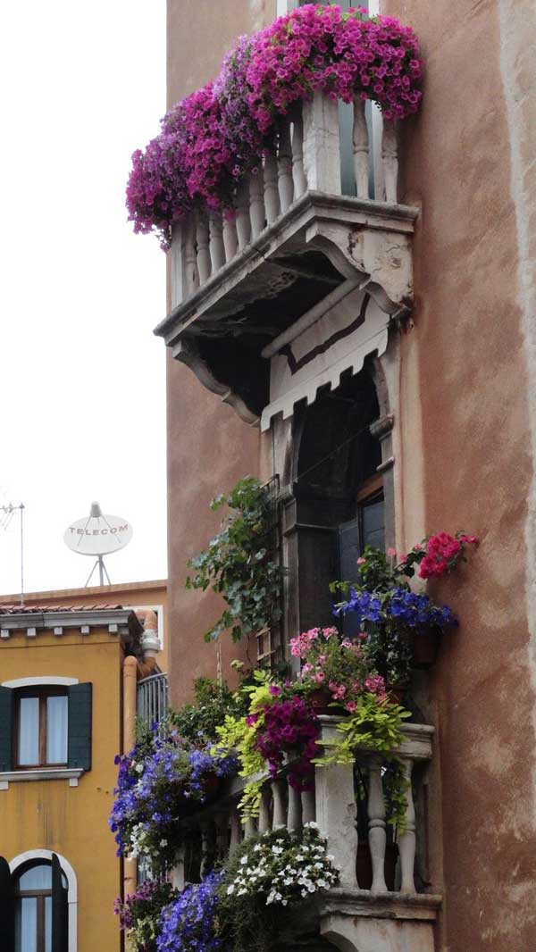 Spectacular-Balcony-Garden-Woohome-19
