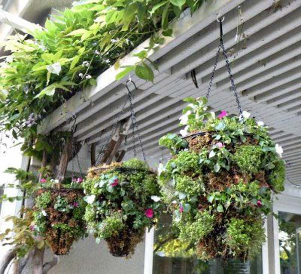 Hanging-Planter-Ideas-Woohome-20