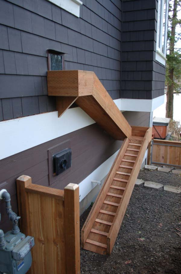 Projects-and-Tips-for-Pets-WooHome-11