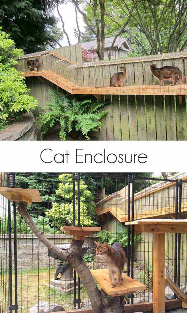 Projects-and-Tips-for-Pets-WooHome-2