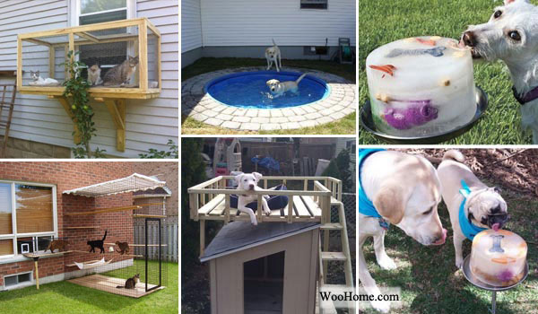 Etonnant Top 20 Brilliant DIY Backyard Projects And Tips For Your Pets