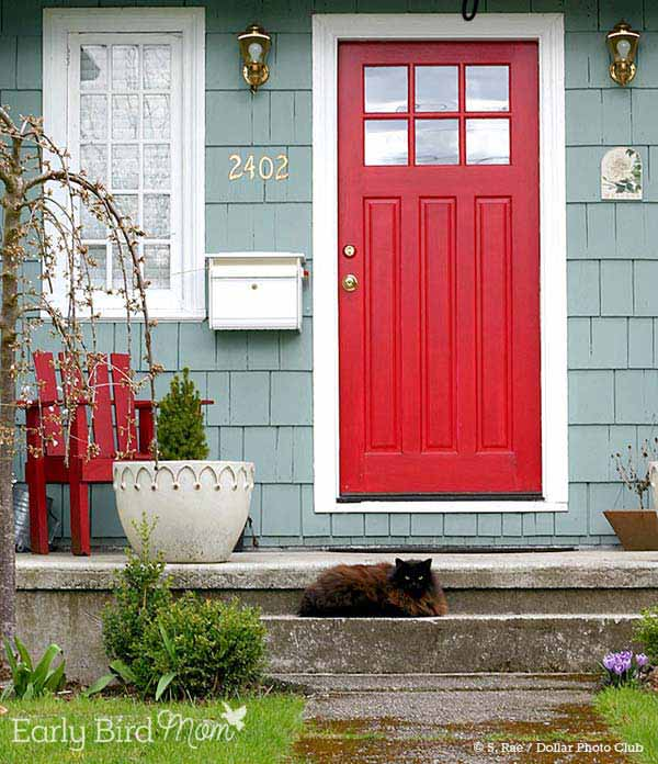 colored-front-door-14