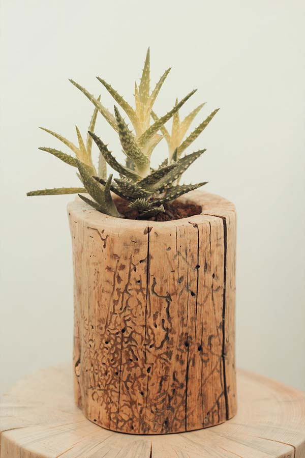 diy-stump-vase-11