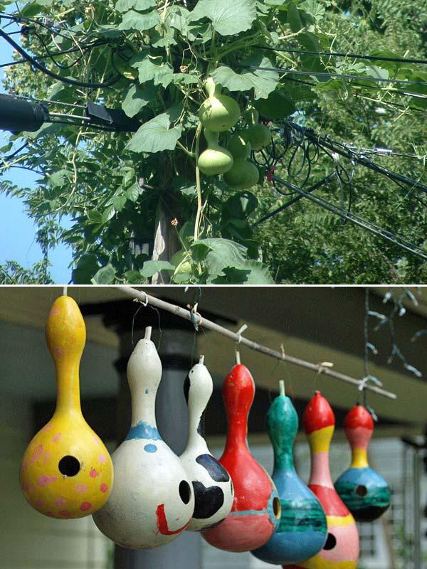 unusual-bird-nests-woohome-13