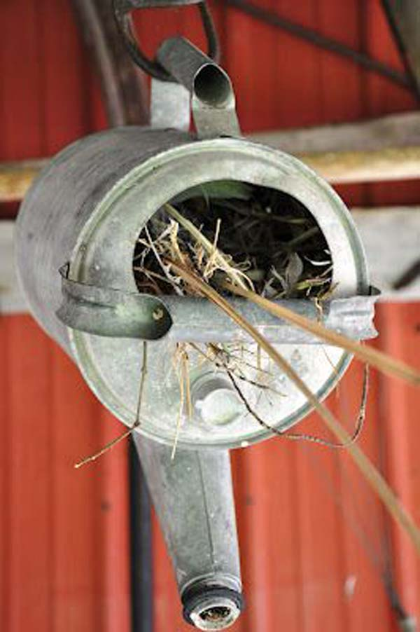 unusual-bird-nests-woohome-15