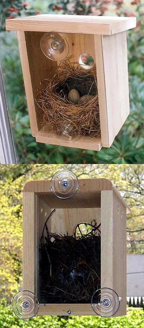 unusual-bird-nests-woohome-6