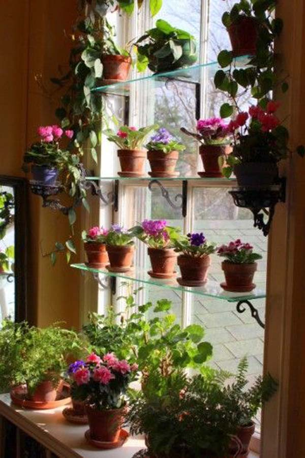 indoor-garden-projects-13