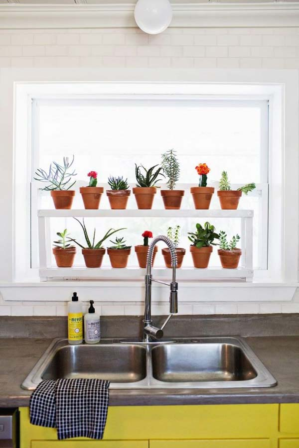 indoor-garden-projects-17