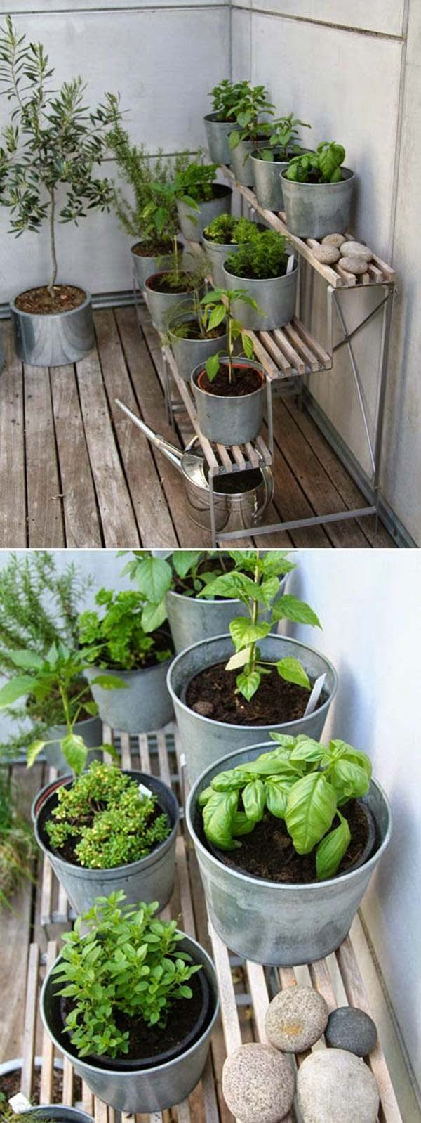 indoor-garden-projects-18
