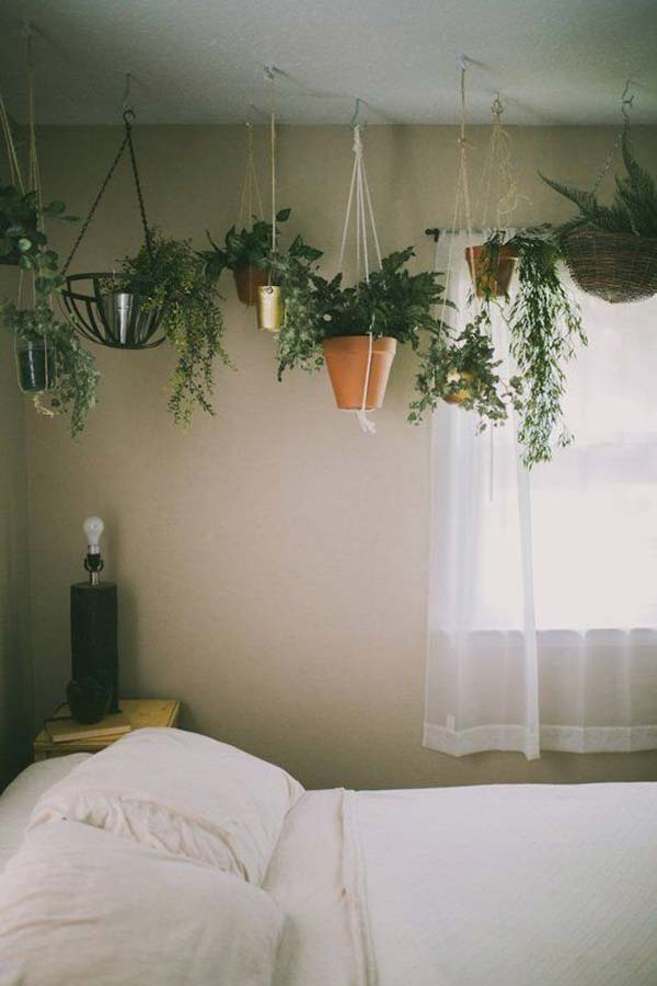 indoor-garden-projects-19