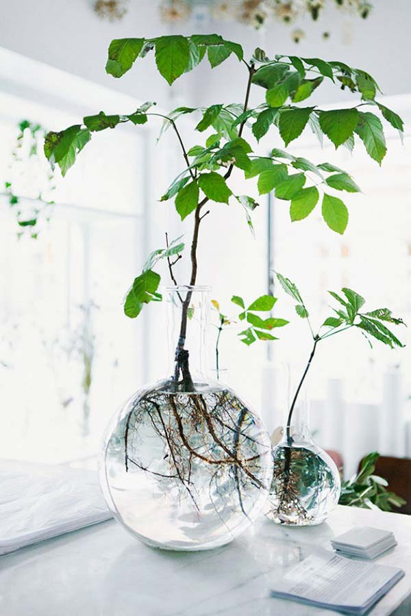 indoor-garden-projects-2