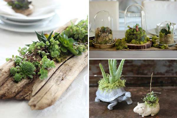indoor-garden-projects-21