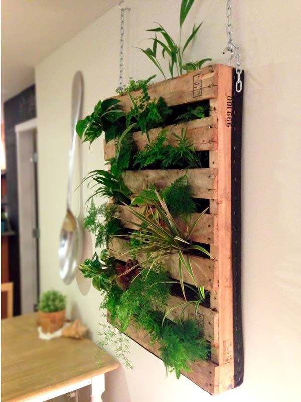 indoor-garden-projects-22