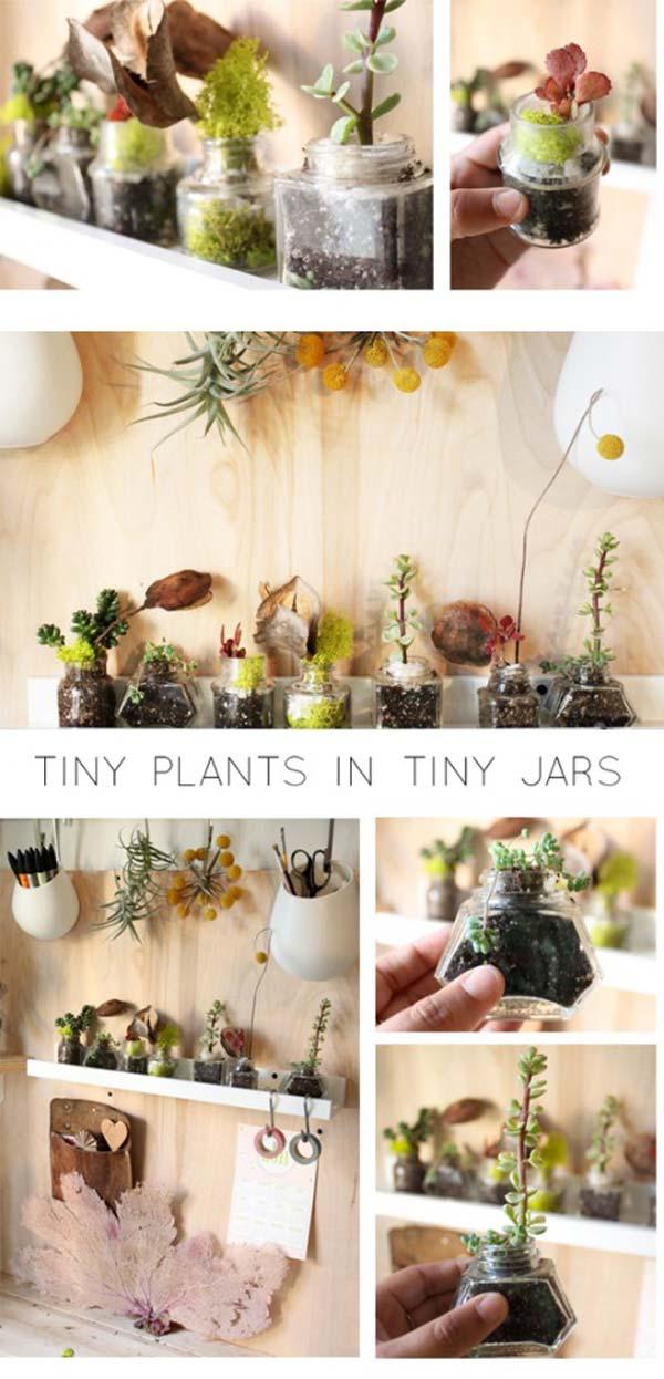 indoor-garden-projects-23