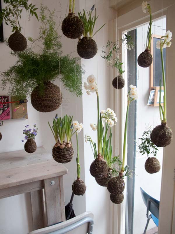 suspended indoor gardening