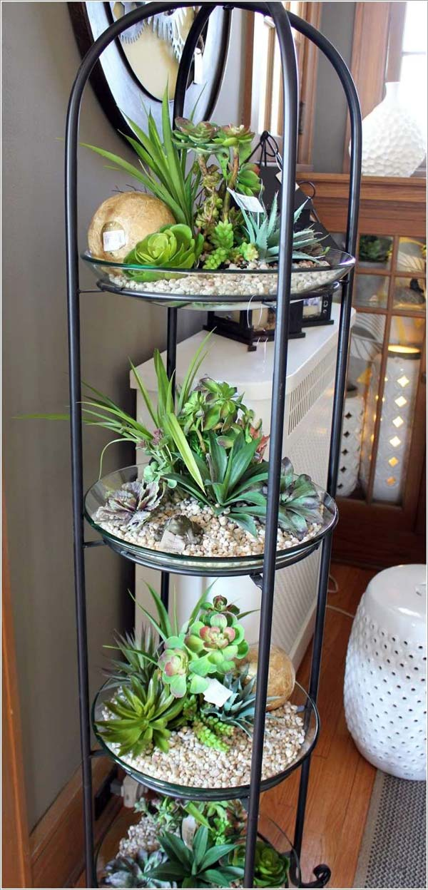 Top 24 Awesome Ideas to Display Your Indoor Mini Garden ...