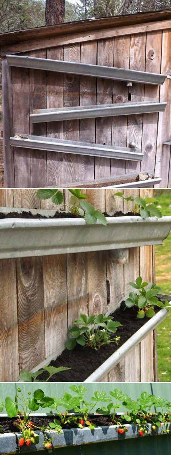 rain_gutters_strawberry_garden