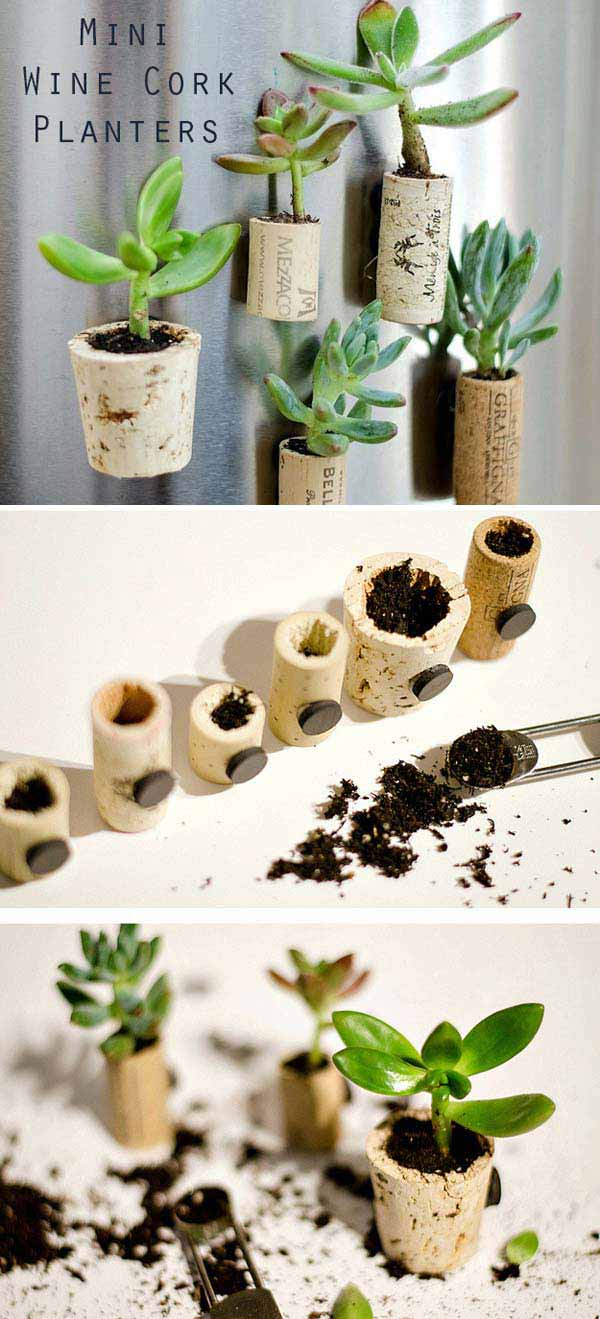 3-mini-wine-cork-planters-woohome