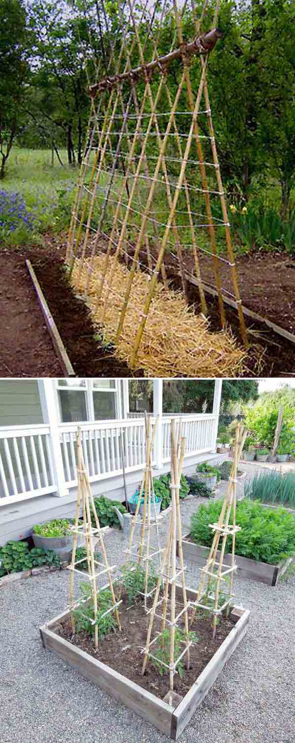 make a garden teepee to grow pole beans