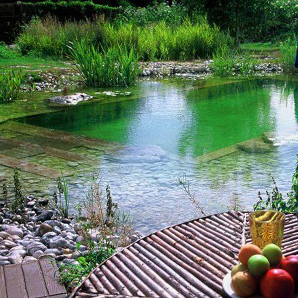 24 backyard natural pools you want to have them for Piscine naturelle design