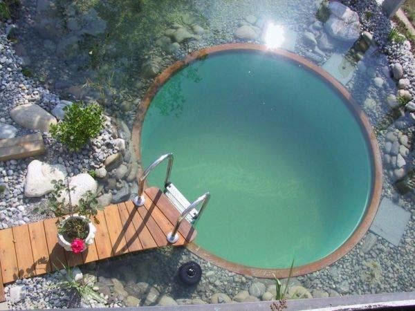 backyard-natural-swimming-pool-12