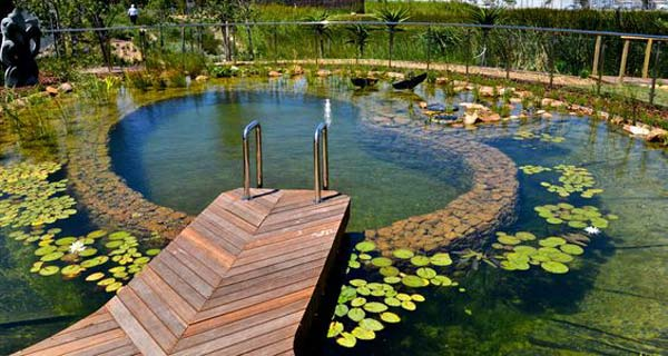 24 backyard natural pools you want to have them for Pool design virginia
