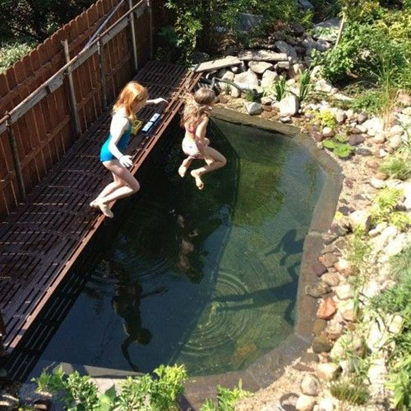 24 backyard natural pools you want to have them for Diy pond liner ideas