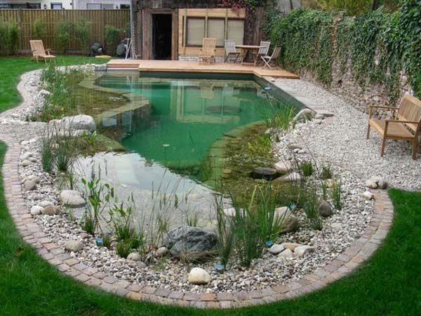 24 backyard natural pools you want to have them for Modern garden pond designs