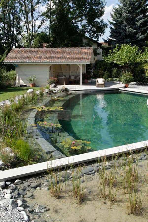 backyard-natural-swimming-pool-21