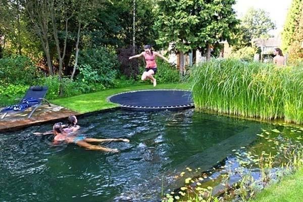 backyard-natural-swimming-pool-7