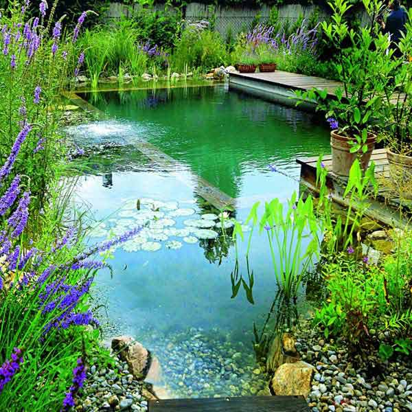 24 Backyard Natural Pools You Want To Have Them