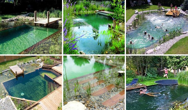 30 budget friendly fun and quirky diy wedding ideas Natural swimming pool builders