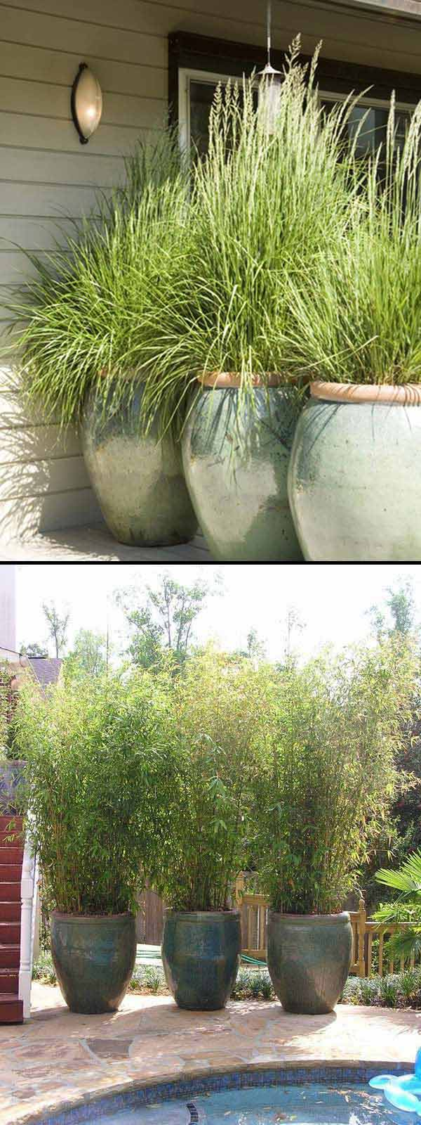 Make a Large Pot Project for Garden and Yard on Tree Planting Ideas For Backyard id=25393
