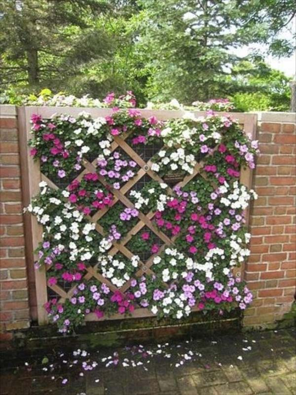 Trellis And Lattice Around Your Home 01