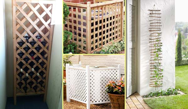 trellis-and-lattice-around-your-home