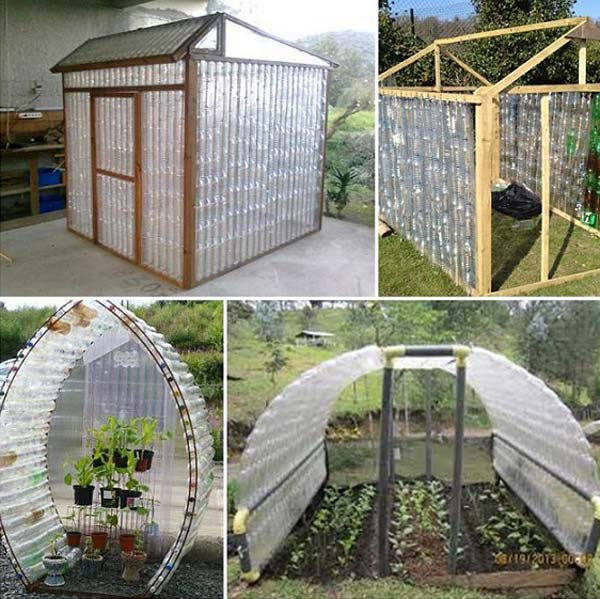 07-make-a-plastic-bottle-greenhouse