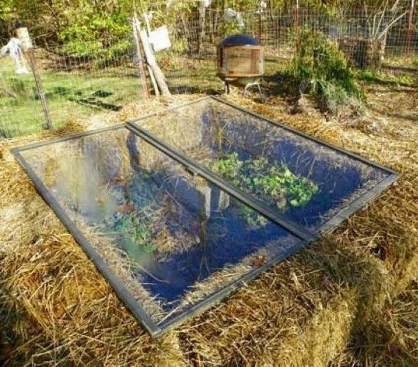 17 Simple Budget-Friendly Plans to Build a Greenhouse ...