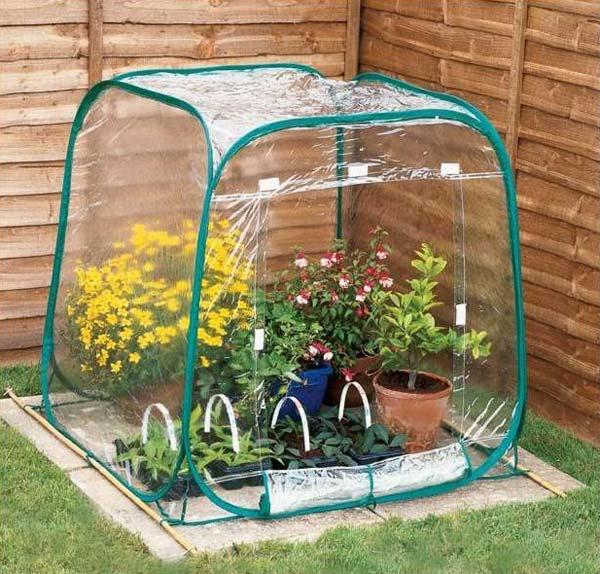 11-plastic-tent-greenhouse