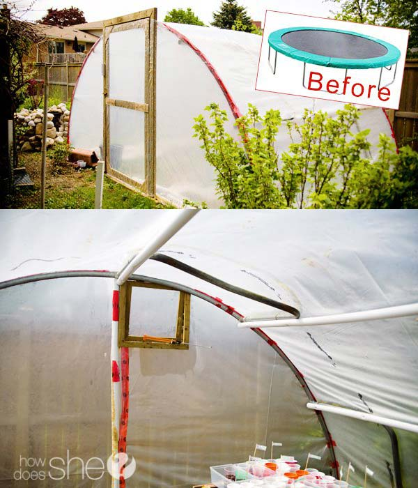 14-create-a-greenhouse-out-of-a-trampoline