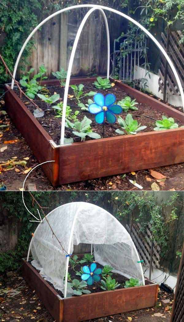 Bamboo Greenhouse Design