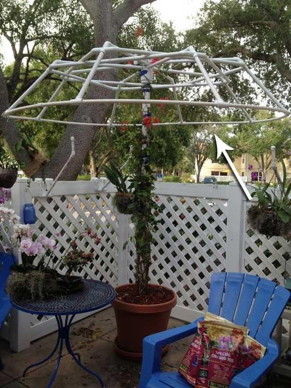 Amazing Use PVC Pipes To Create A Living Canopy.