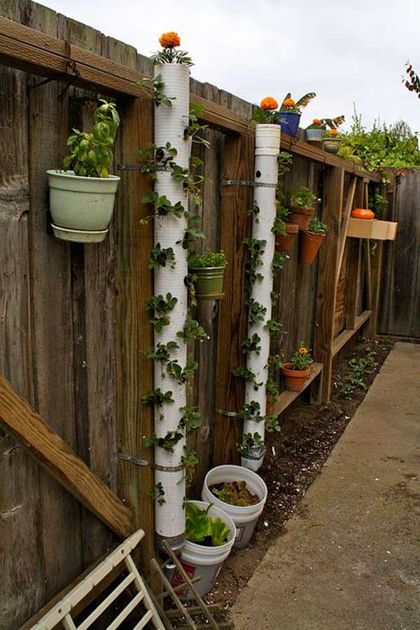 5. Set Up A Strawberry Tower In Your Backyard.