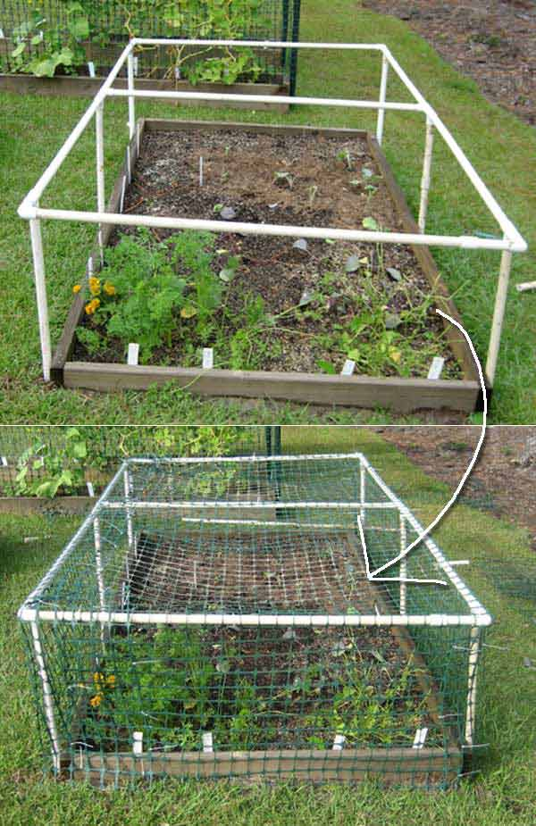 Top 20 Low-Cost DIY Gardening Projects Made With PVC Pipes DIY PVC Pipe Projects for Garden 6