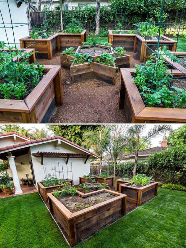22 Ways for Growing a Successful Vegetable Garden ...