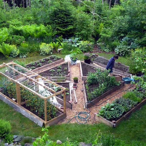 22 ways for growing a successful vegetable garden for Small garden layouts designs
