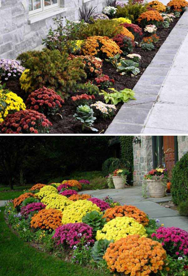 As your summer flowers and plants start to fade, replace them with Fall  ones like mums, pansies, and kale.