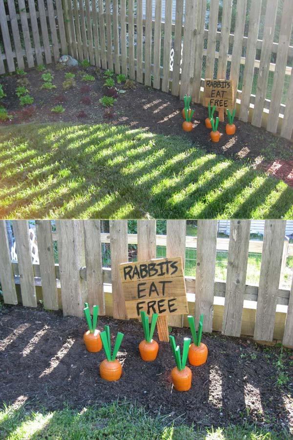 Wooden Yard Carrots